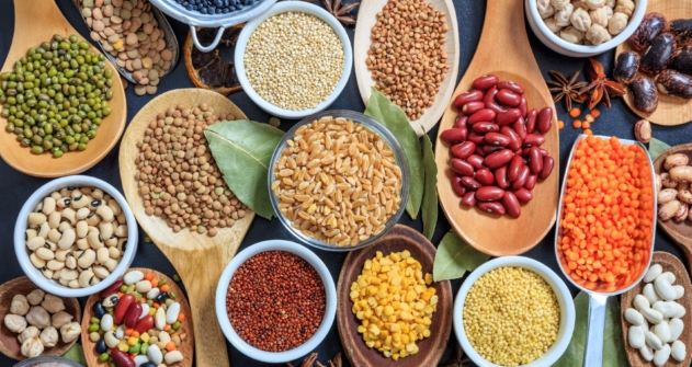 composition-of-various-kinds-of-legumes-PCPCG5A